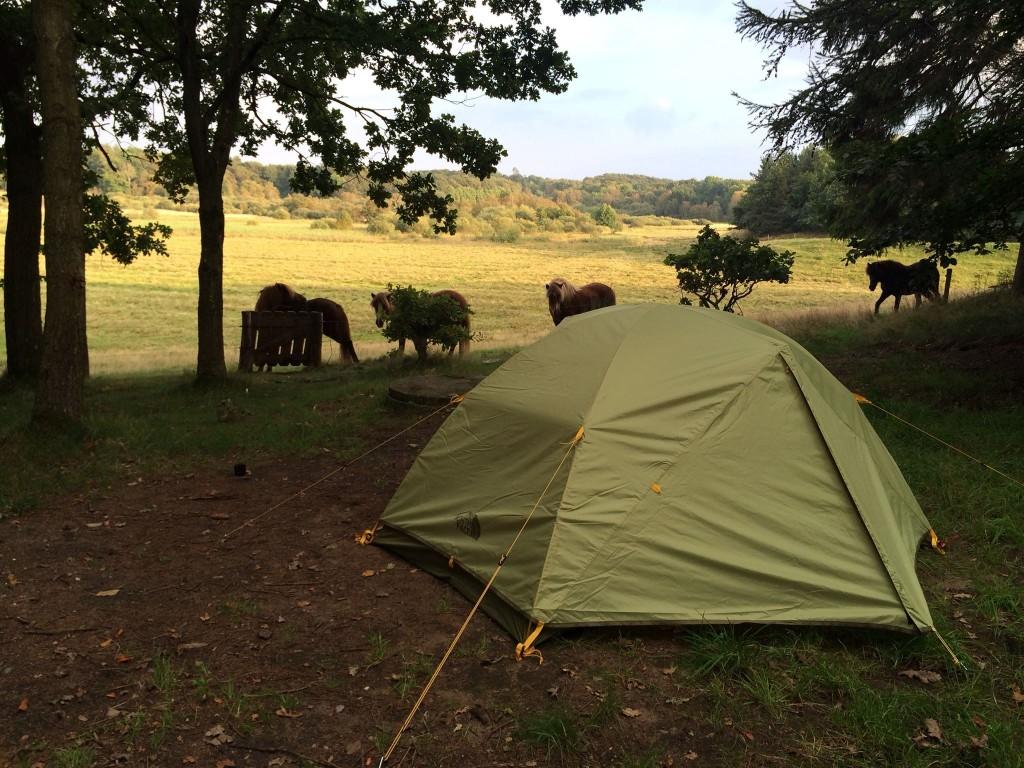 I telt på lejrpladsen